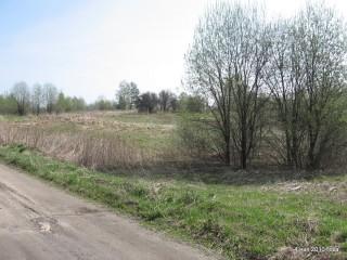 Фотография на дороге прилегающей к юго-восточному краю участка