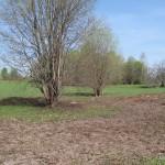 С холма сходит плодородный слой и получается отличное поле для картошки, посадок